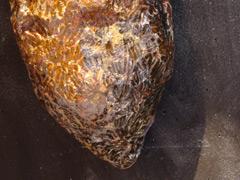 Têtes de ruche